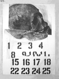 1976-23_web